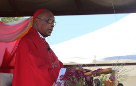 Cardinal Napier at Blessed Benedict Daswa 30th Martyrdom Anniversary